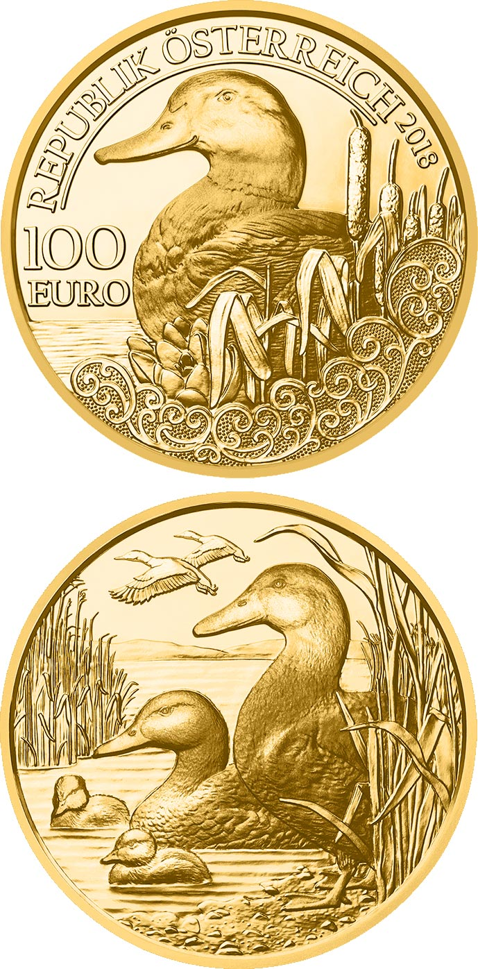 Image of 100 euro coin – The Mallard | Austria 2018.  The Gold coin is of Proof quality.