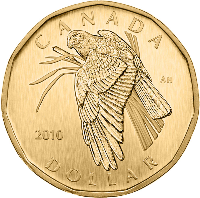 Image of Northern Harrier – 1 dollar coin Canada 2010.  The Nickel, bronze plating coin is of BU quality.