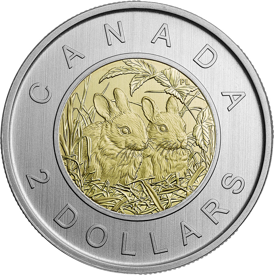 Image of 2 dollars coin - Baby Rabbits | Canada 2014