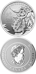 20 dollar coin Year of the Snake  | Canada 2013
