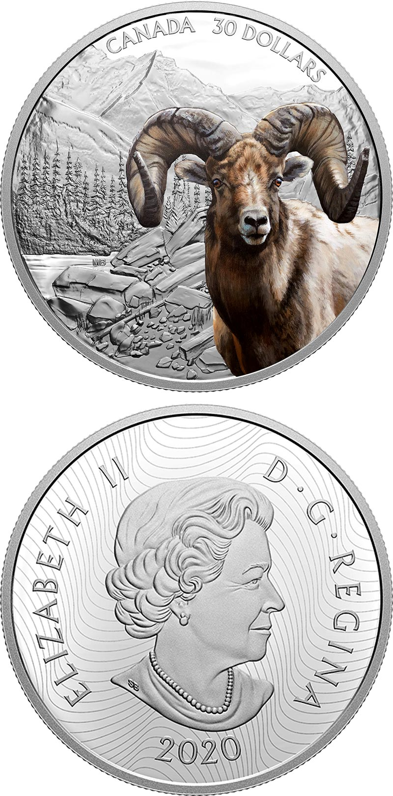 Image of 30 dollars coin - Bighorn Sheep | Canada 2020.  The Silver coin is of Proof quality.