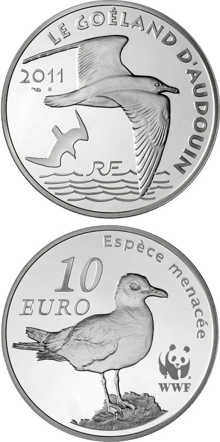 Image of 10 euro coin - WWF, Audouin's Gull | France 2011.  The Silver coin is of Proof quality.