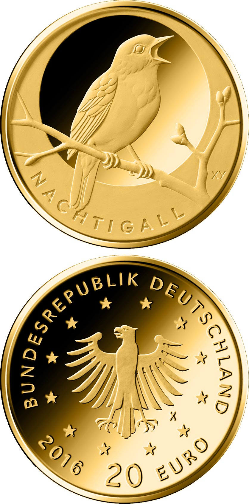 Image of 20 euro coin - Nachtigall  | Germany 2016.  The Gold coin is of Proof quality.