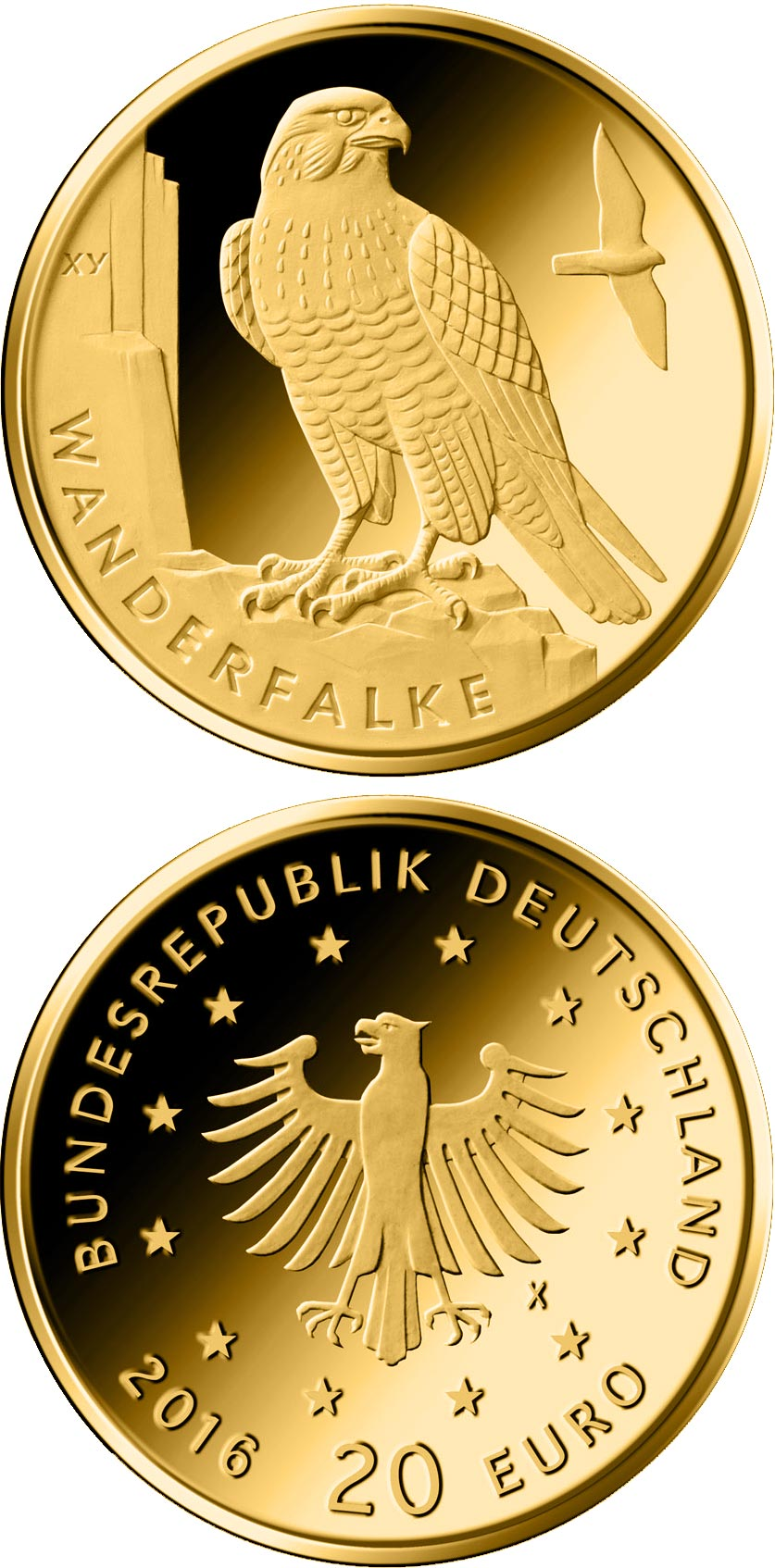 Image of 20 euro coin - Wanderfalke  | Germany 2019.  The Gold coin is of Proof quality.