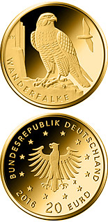 20 euro Wanderfalke  - 2019 - Series: Birds - Germany
