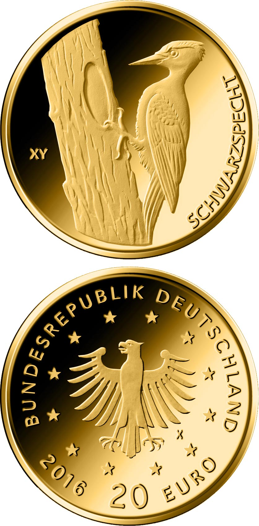 Image of 20 euro coin - Schwarzspecht  | Germany 2021.  The Gold coin is of Proof quality.