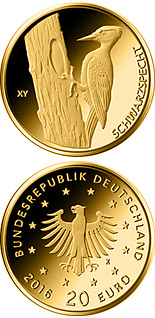 20 euro Schwarzspecht  - 2021 - Series: Birds - Germany