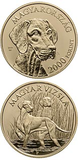 2000 forint coin The Hungarian vizsla | Hungary 2019