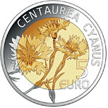 5 euro Centaurea Cyanus - 2016 - Series: Fauna and Flora in Luxembourg - Luxembourg