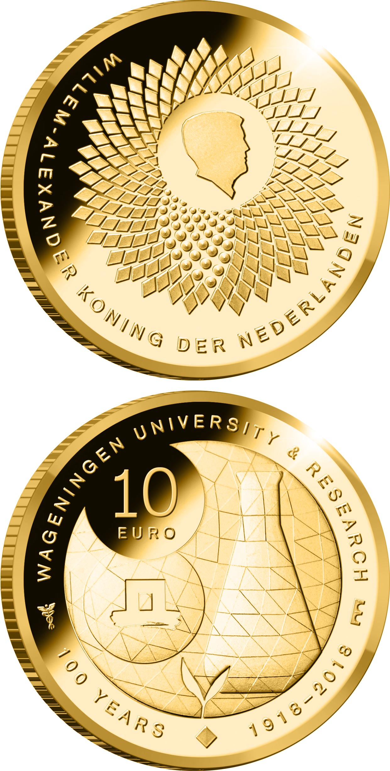 gold  euro coins   euro coin series  netherlands