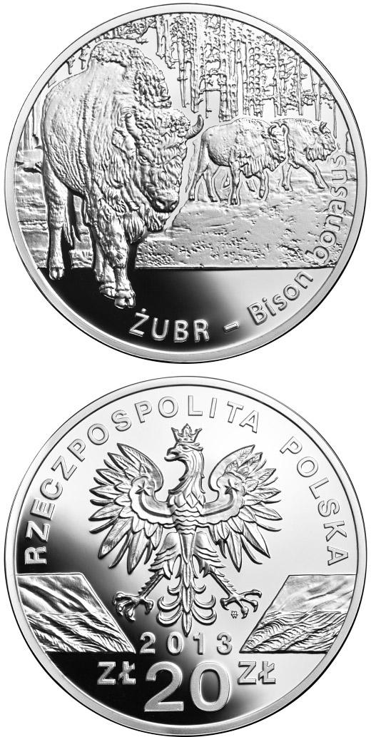 20 Zloty Coin Wisent Bison Bonasus Poland 2013