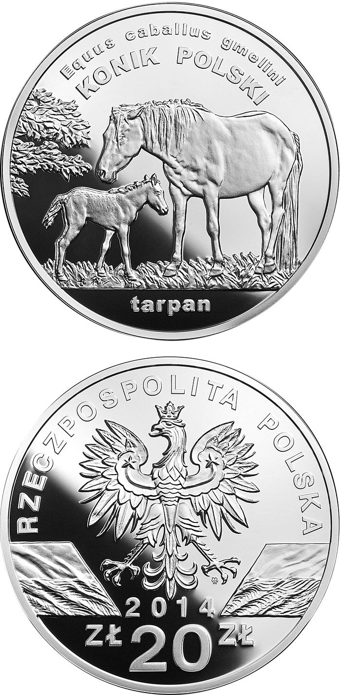 Image of 20 zloty coin - Polish konik horse  | Poland 2014.  The Silver coin is of Proof quality.