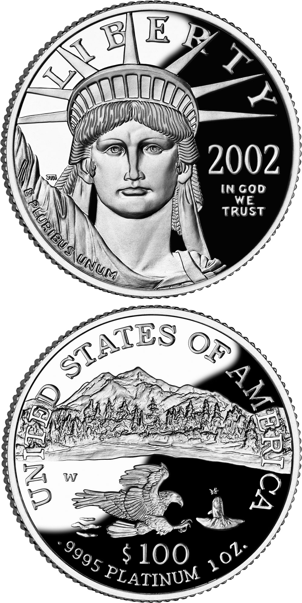 Image of 100 dollars coin - American Eagle Platinum One Ounce Proof Coin | USA 2002