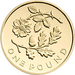 1 pound The Floral Pound: Wales - 2013 - United Kingdom