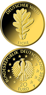 20 euro coin Eiche | Germany 2010