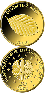 Image of 20 euro coin Buche | Germany 2011.  The Gold coin is of Proof quality.
