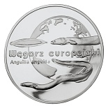 Image of 20 zloty coin - European Eel | Poland 2003.  The Silver coin is of Proof quality.