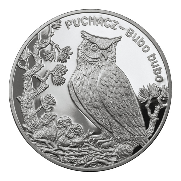 20 zloty Eagle Owl - 2005 - Series: Animals of the World  - Poland