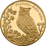 Image of 2 zloty coin – Eagle Owl | Poland 2005.  The Nordic gold (CuZnAl) coin is of UNC quality.