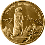 Image of 2 zloty coin - Marmot | Poland 2006.  The Nordic gold (CuZnAl) coin is of UNC quality.
