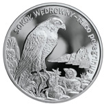 Image of 20 zloty coin - Peregrine falcon | Poland 2008.  The Silver coin is of Proof quality.