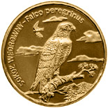 Image of 2 zloty coin – Peregrine falcon | Poland 2008.  The Nordic gold (CuZnAl) coin is of UNC quality.